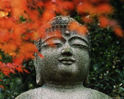 Buddha---1-1267775264